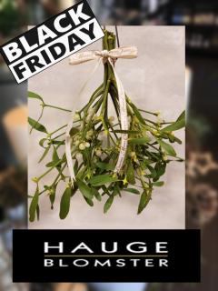 Black Friday Hauge Blomster